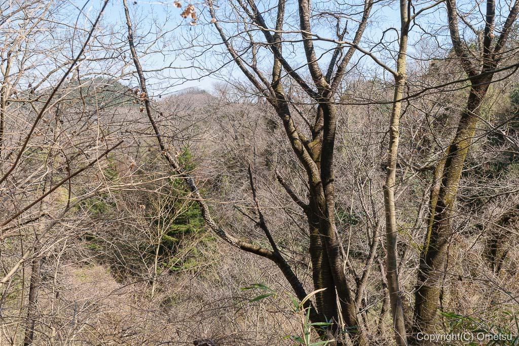 あきる野市郊外の小峰公園の、雑木林
