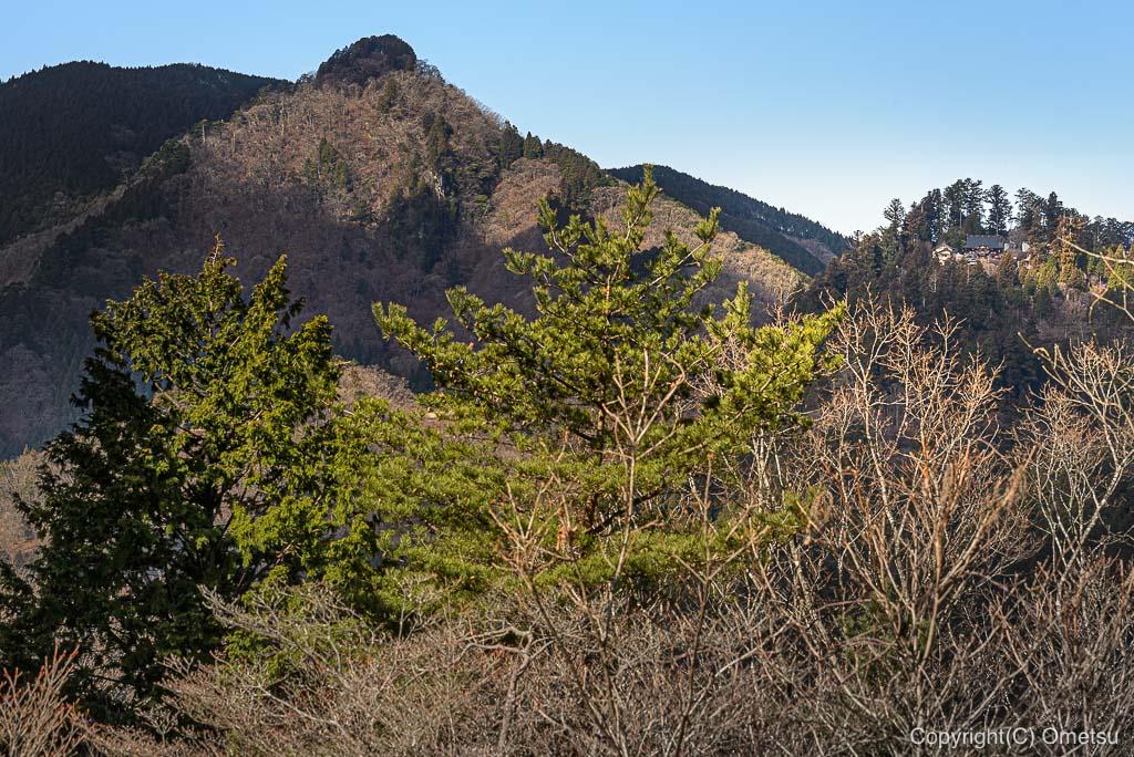 日の出山・頂上から、御嶽神社の展望