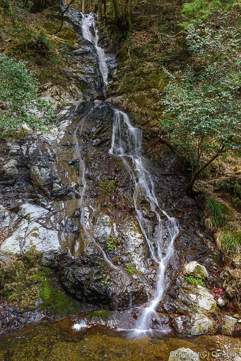 日の出山、白岩の滝