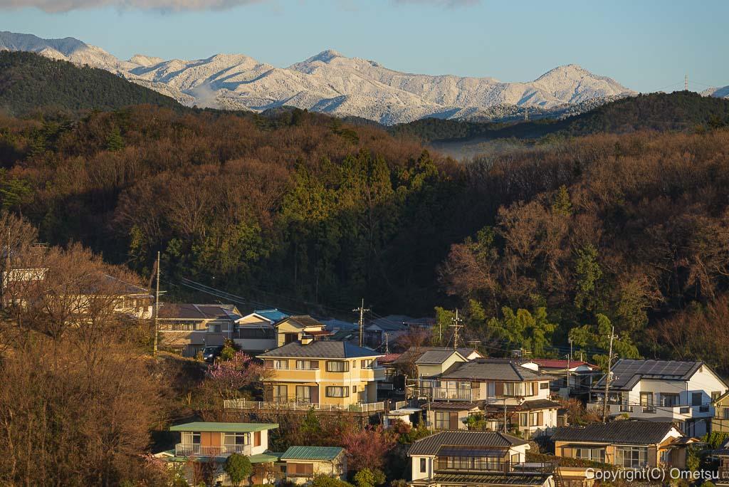 奥多摩の山・川苔山も、雪で真っ白