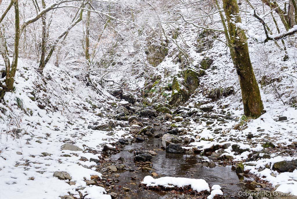 青梅市・御岳山、雪のロックガーデン
