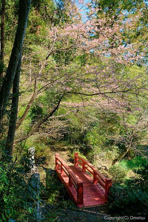あきる野市・大悲願寺の、お遍路道の橋と花