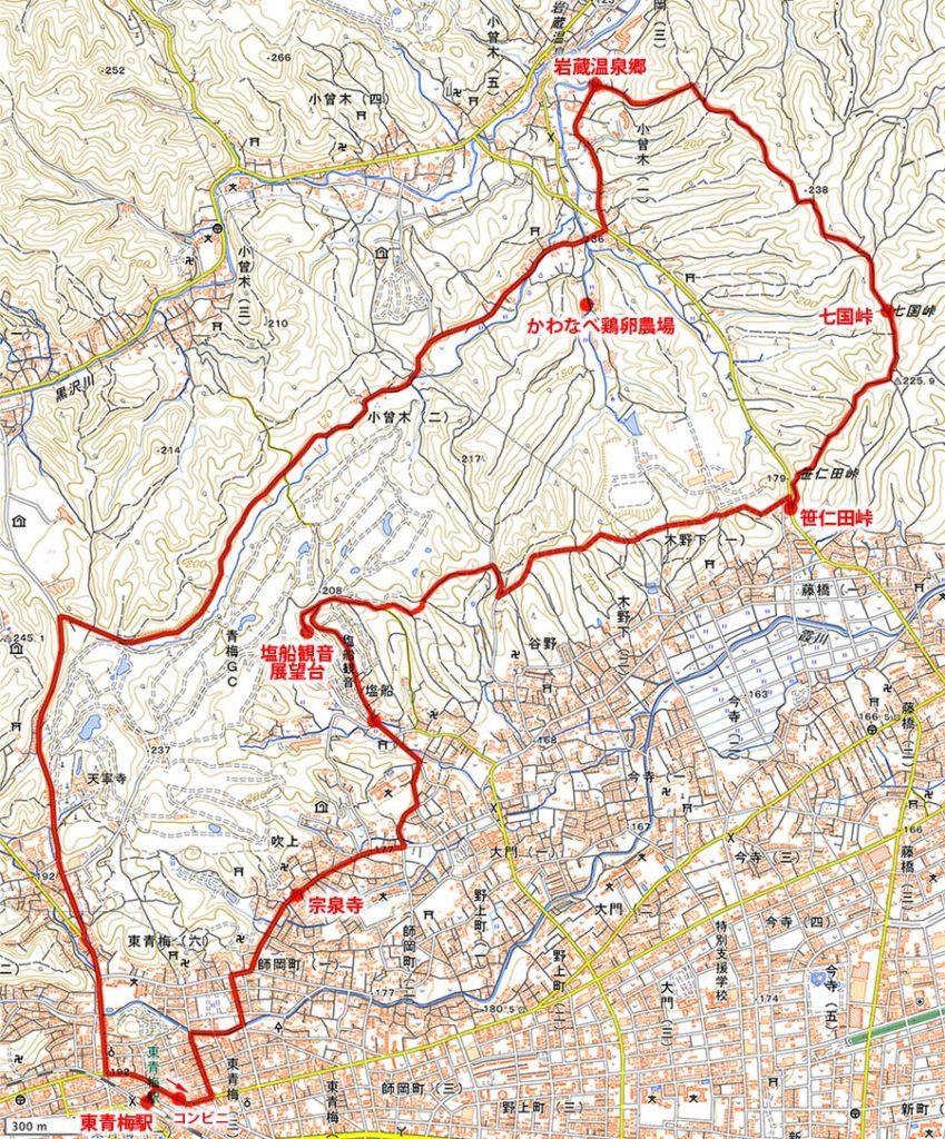 霞丘陵ハイキングマップ