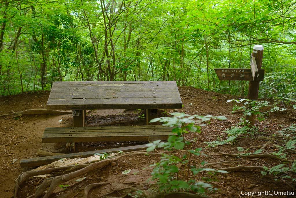 棒ノ折山のベンチ