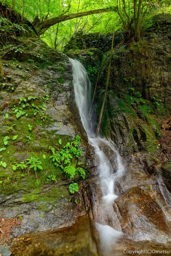棒ノ折山のワサビ棚近くの滝