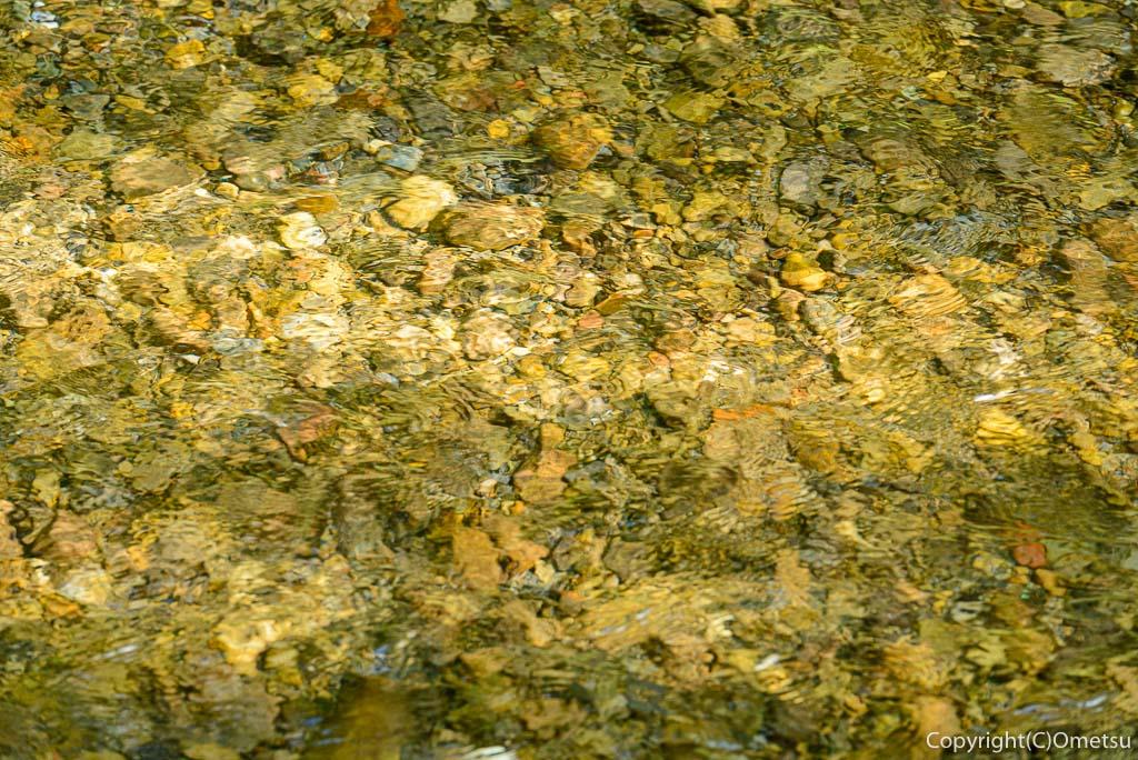 あきる野市、養沢川の清流