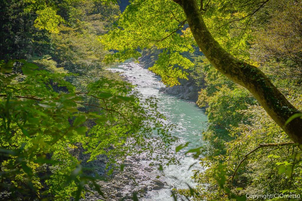 奥多摩むかし道から、多摩川を望む