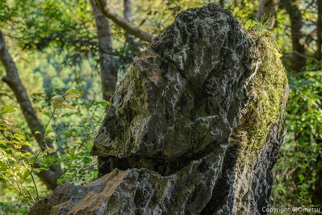 奥多摩むかし道の、弁慶の腕抜き岩