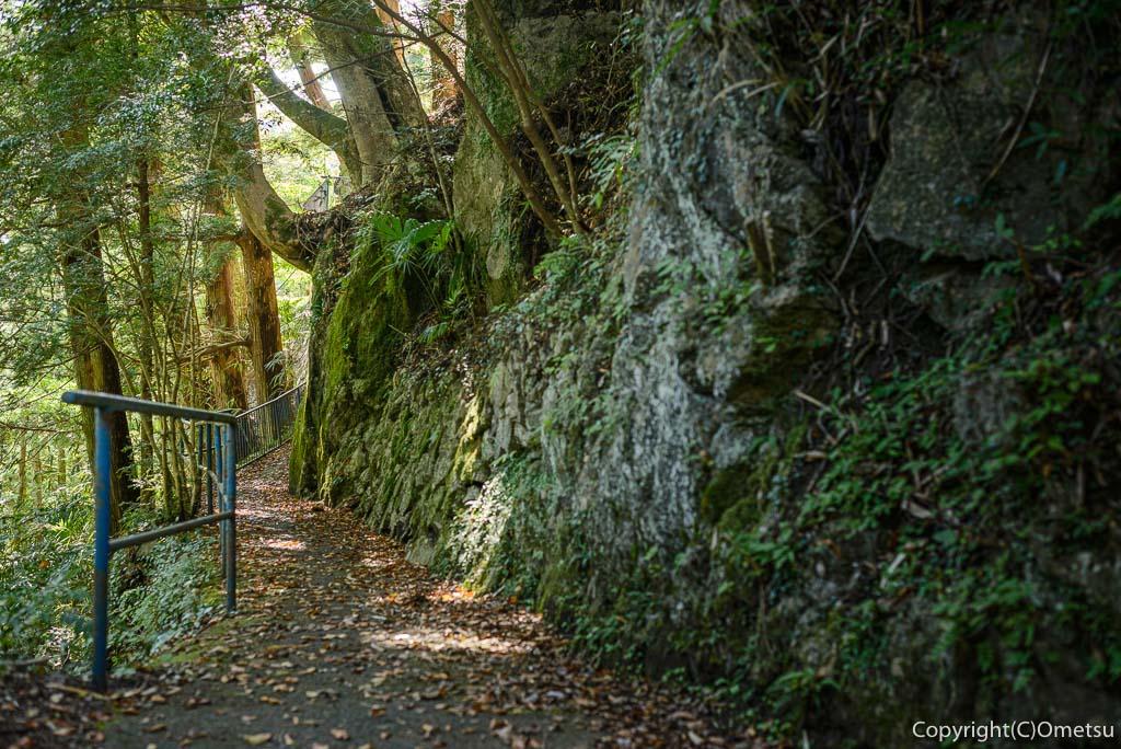 奥多摩むかし道の、白髭神社の参道