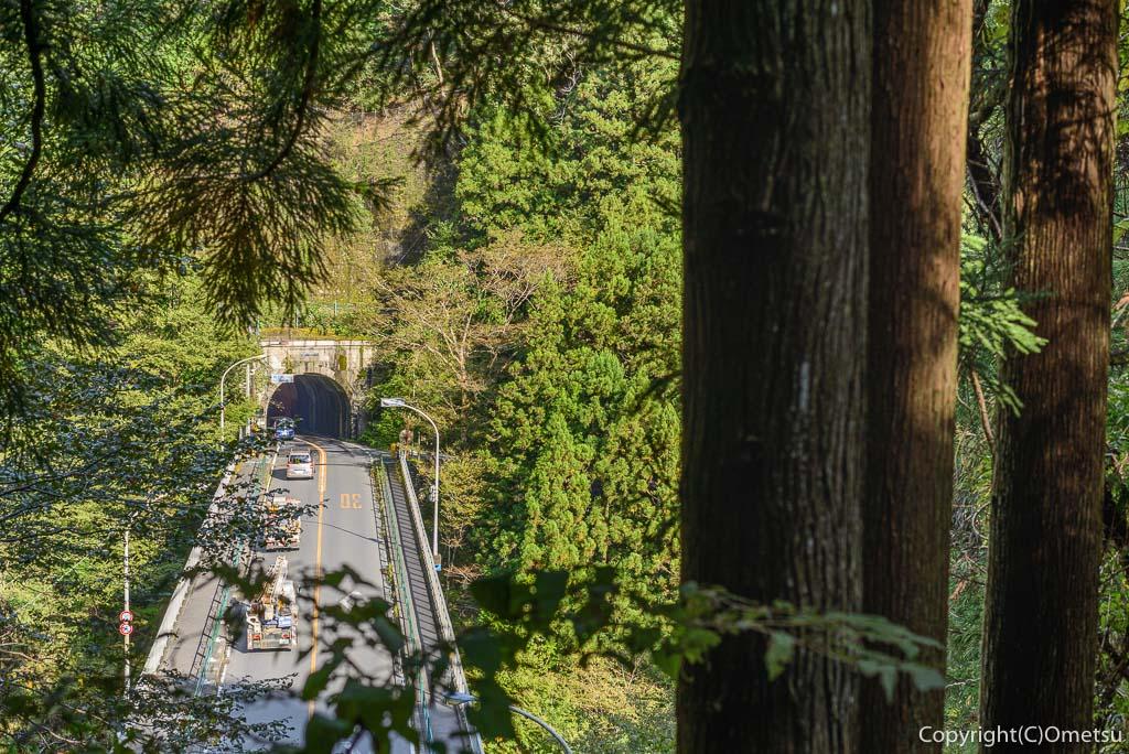 奥多摩むかし道から、橋詰トンネル