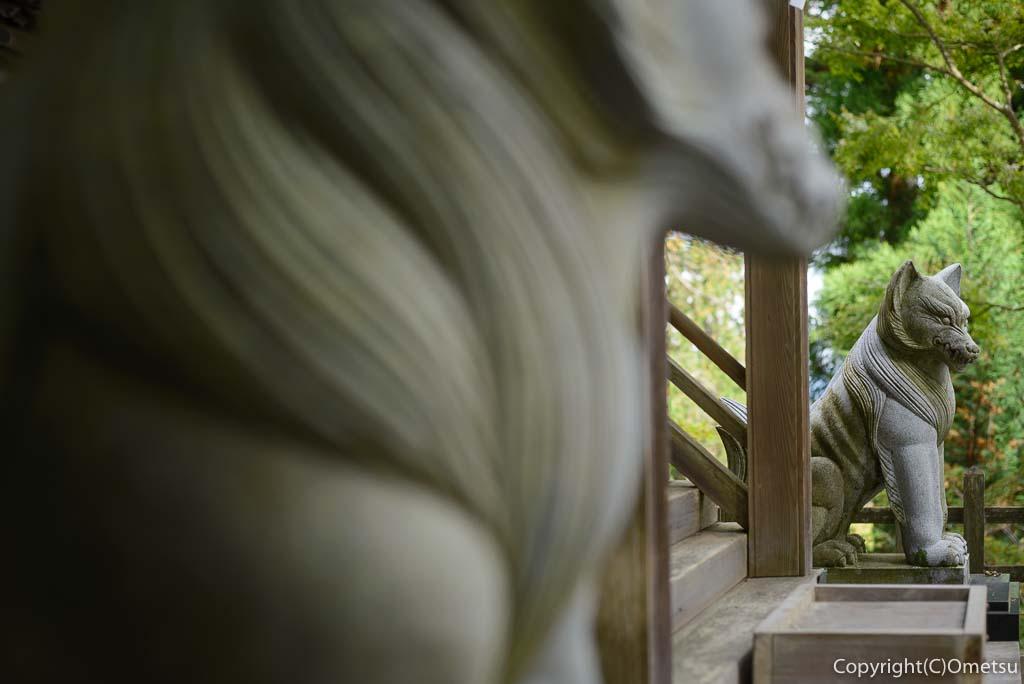 武蔵御嶽神社の大口真神社の狛犬
