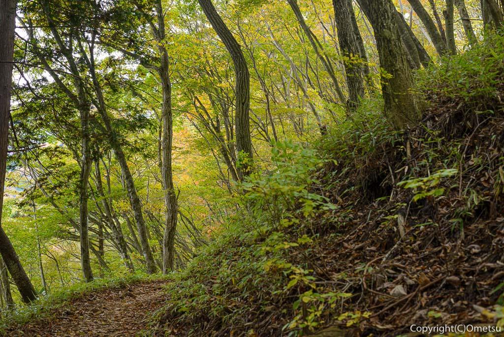 御岳山から大岳への山登山道