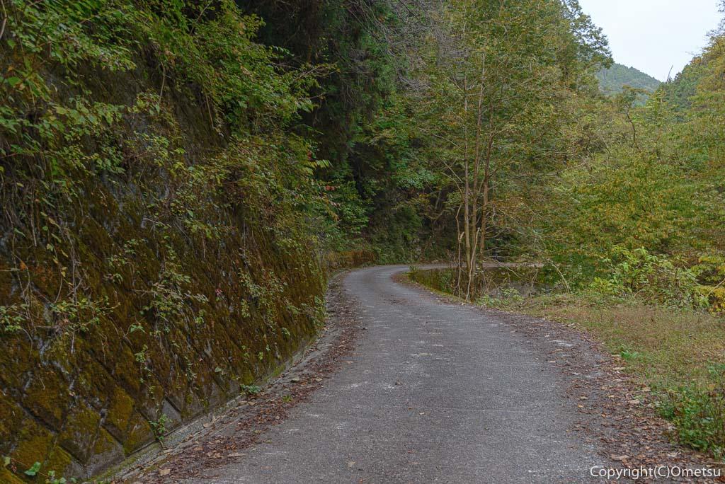 大岳沢の林道
