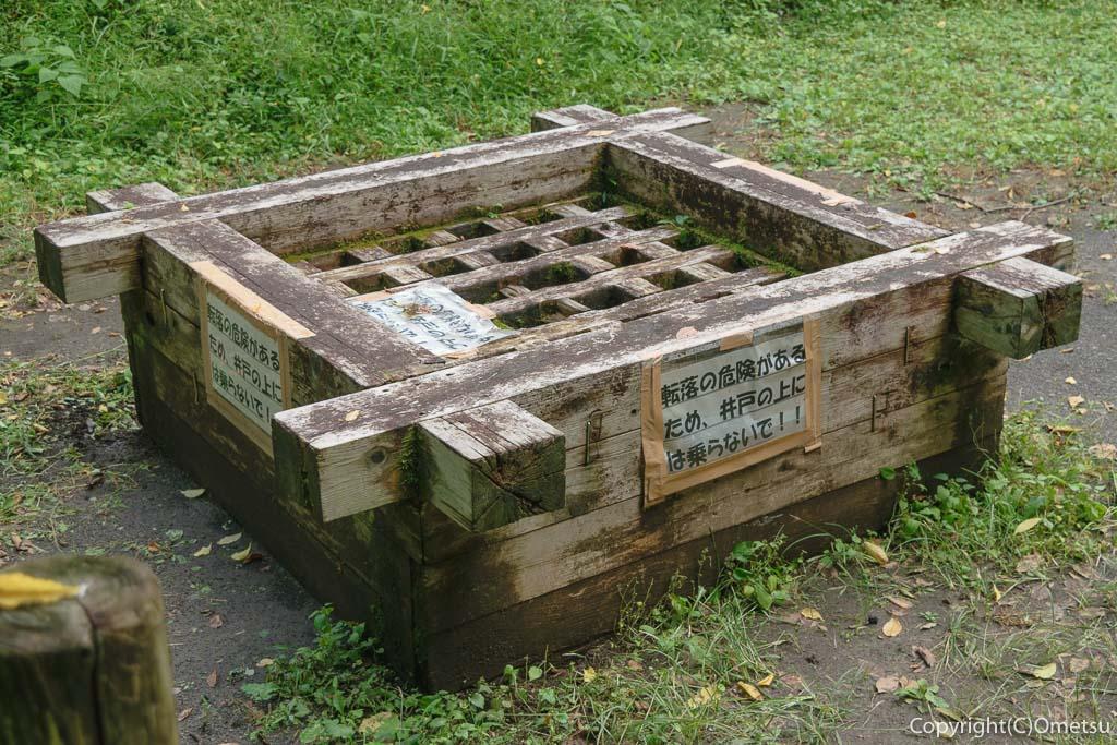 青梅市の大井戸