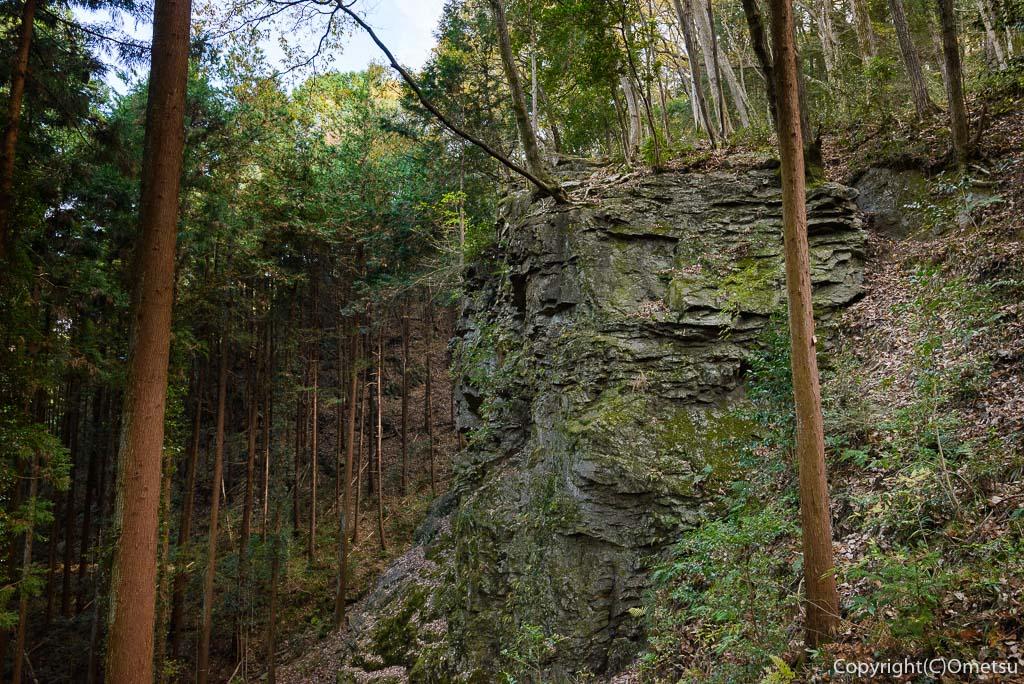 青梅中央アルプス・裏銀座の成木登山道の岩
