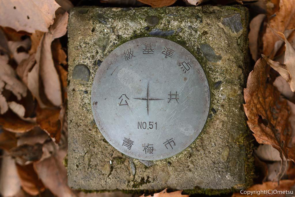 青梅中央アルプス・裏銀座の345m峰の第一高点(公共基準点)