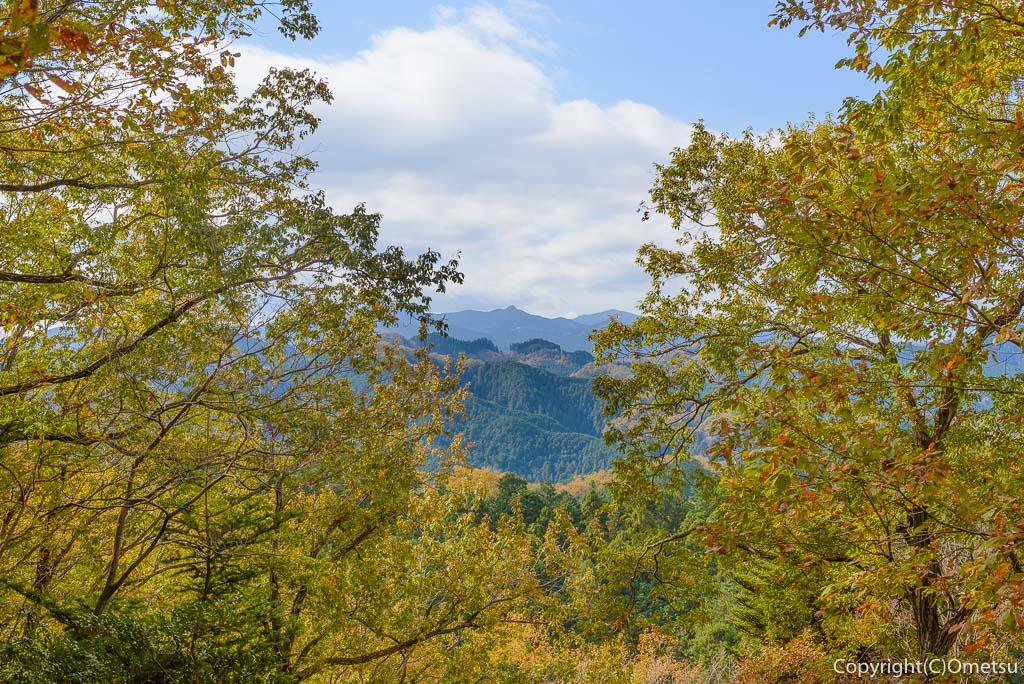 青梅中央アルプス・裏銀座の345m峰から、大岳山の展望