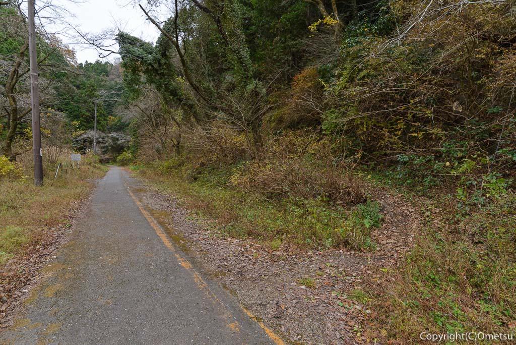 青梅市の、二代目・吹上トンネルへの道