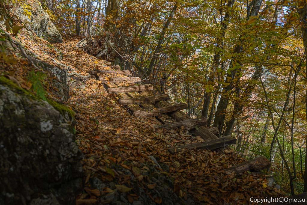 鶴峠〜三頭山の登山道の小焼山巻道の桟道
