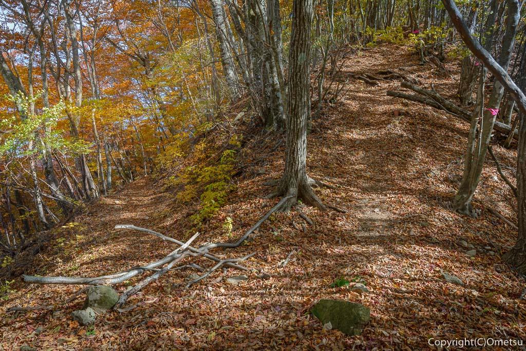 鶴峠〜三頭山の登山道の奥多摩湖分岐点