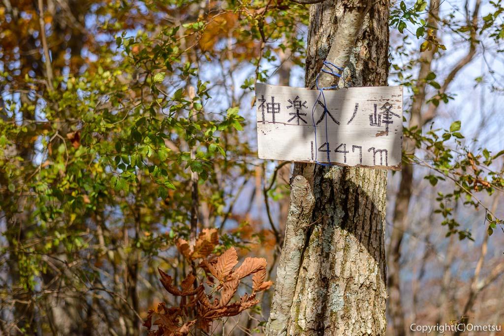 鶴峠〜三頭山の登山道の、神楽入ノ峰山頂
