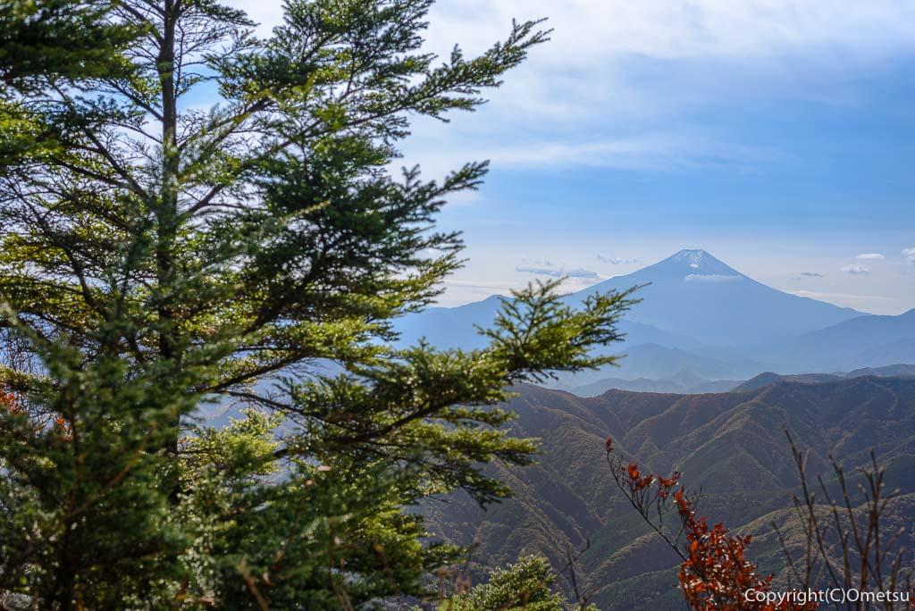 鶴峠〜三頭山の登山道からの富士山