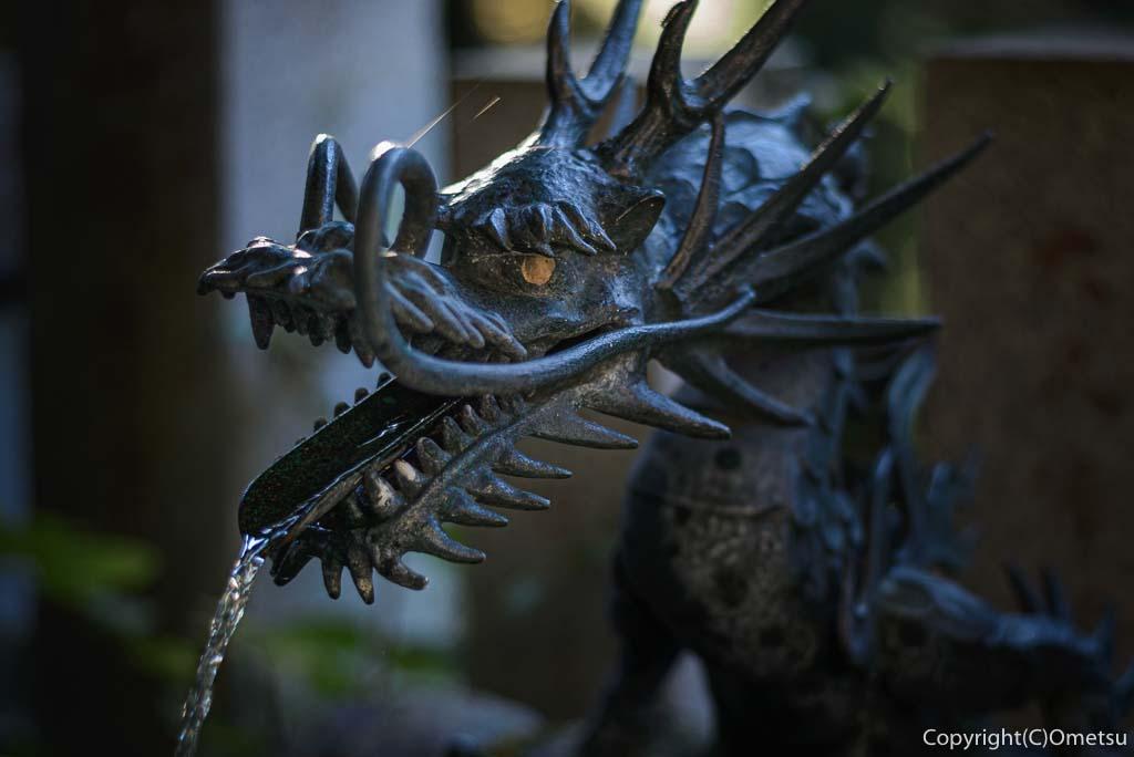 檜原村・数馬の九頭龍神社の手水舎の龍
