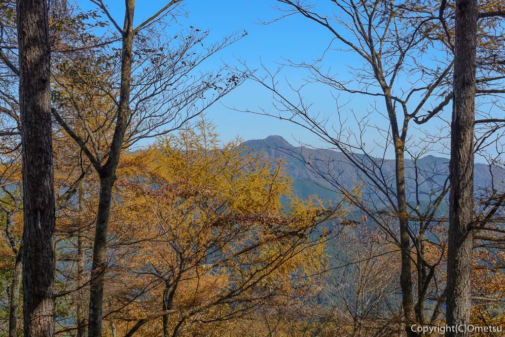 笹尾根からの大岳山