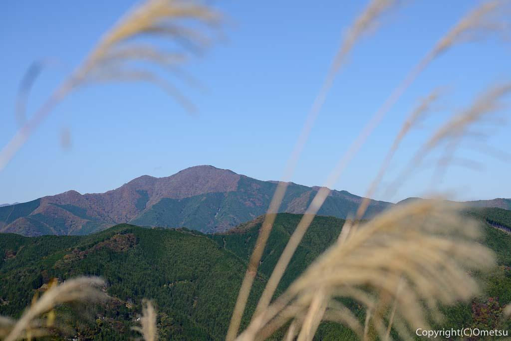 笛吹峠登山道から大岳山
