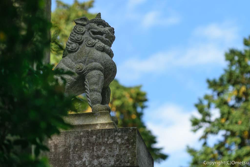 青梅市・勝沼神社の狛犬
