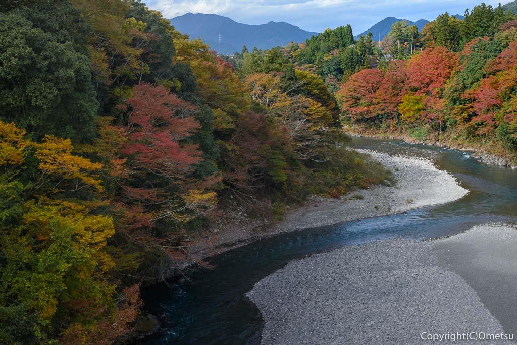 青梅市・和田橋からの紅葉