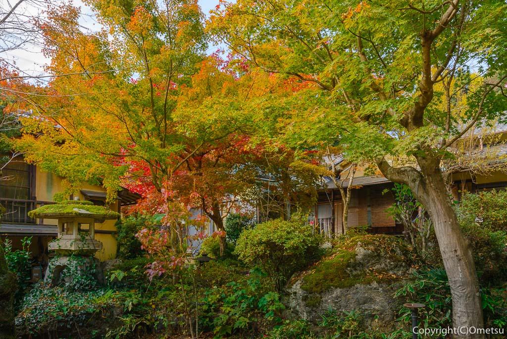 青梅市・御岳渓谷の、茶房ギャラリーついんくるの庭
