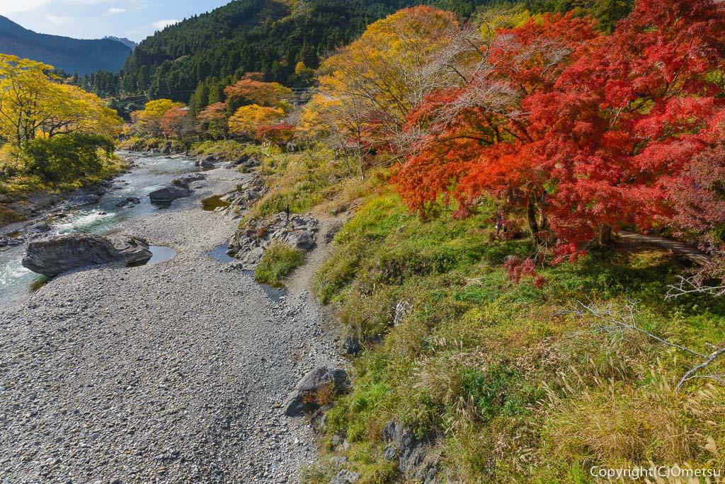 青梅市・御岳渓谷の、鵜の瀬橋からの紅葉