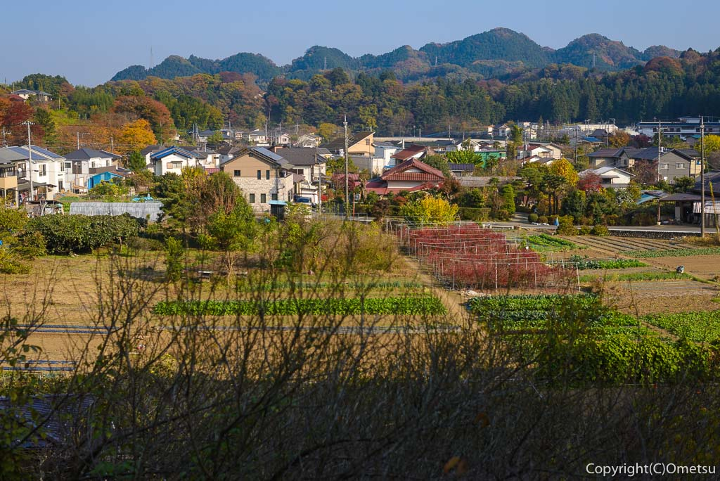あきる野市・郊外の里山風景