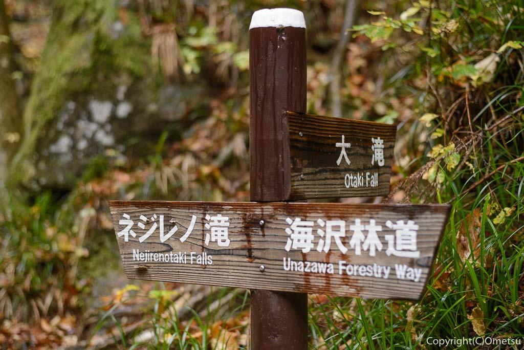 海沢渓谷、ネジレの滝から大滝方面の道標
