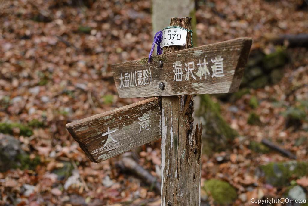 海沢渓谷・大滝の分岐の道標