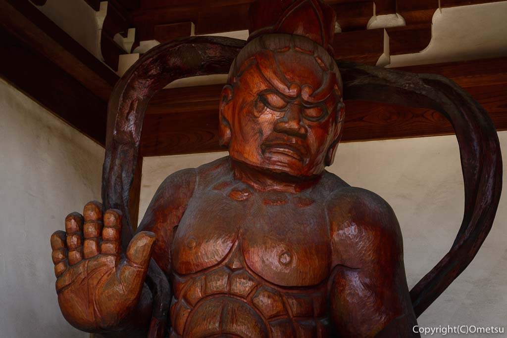 瑞穂町・円福寺の総門の仁王像
