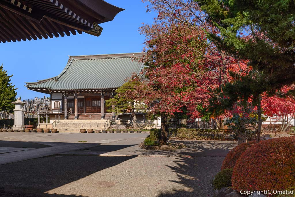 瑞穂町・円福寺の本堂