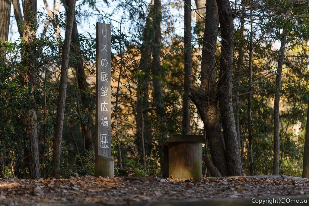青梅の森の、リスの展望広場