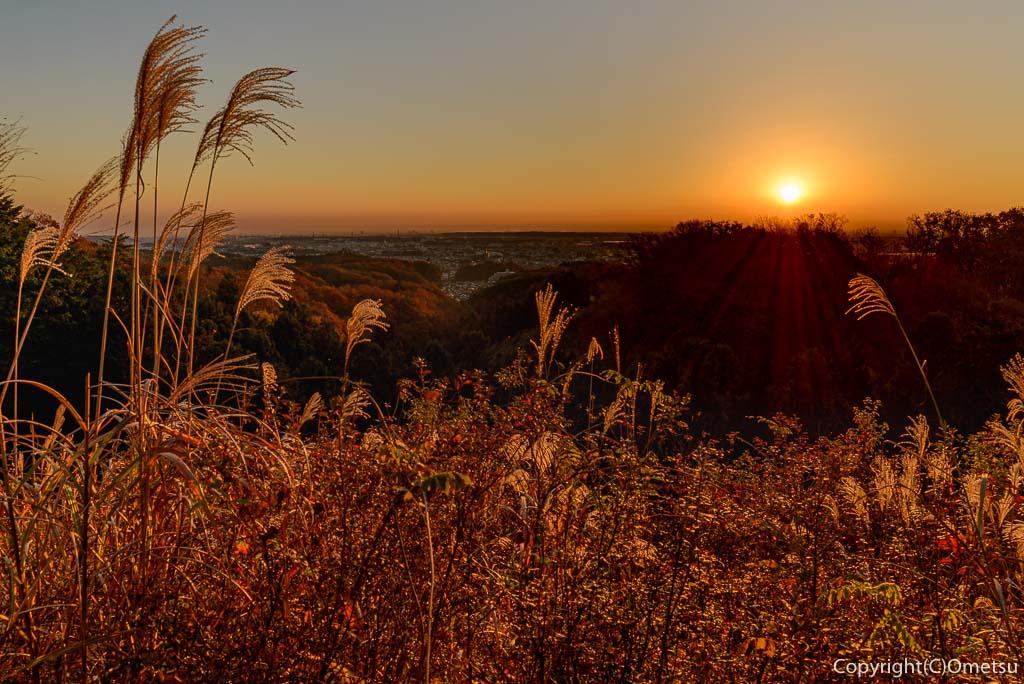 青梅市・永山公園からの日の出