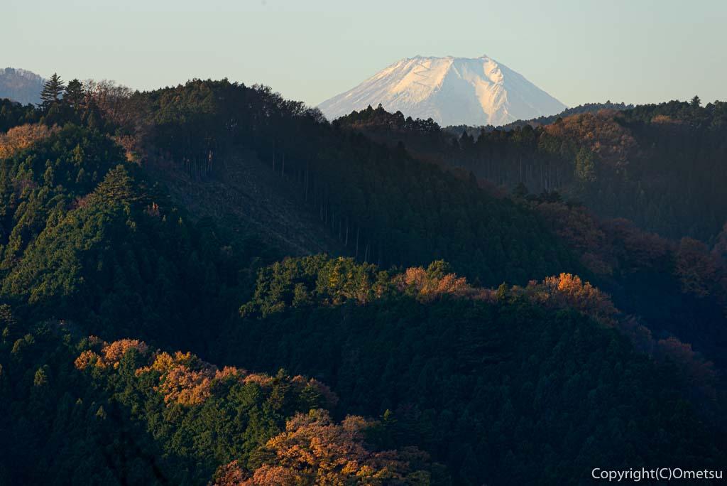 青梅市・永山公園からの富士山