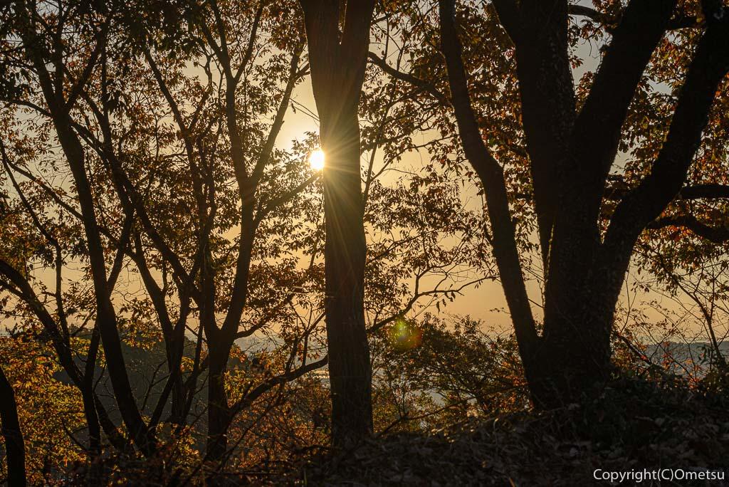 青梅市・永山公園の森と日の出