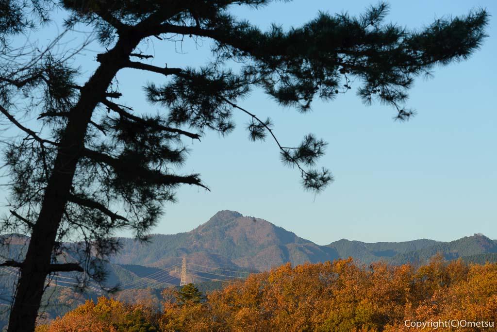 青梅市・永山公園からの、御岳山