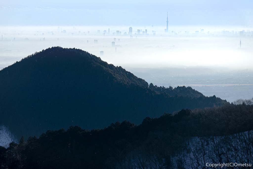 青梅市・御岳山から、雲海とスカイツリー