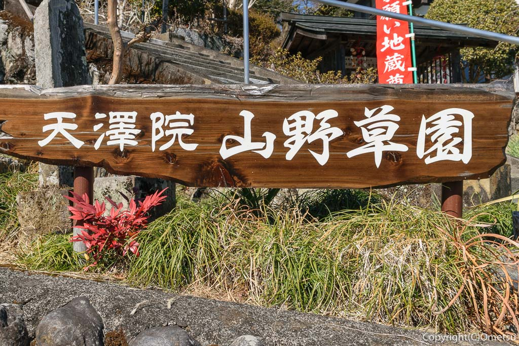 青梅市・梅郷の天澤院の山野草園の看板