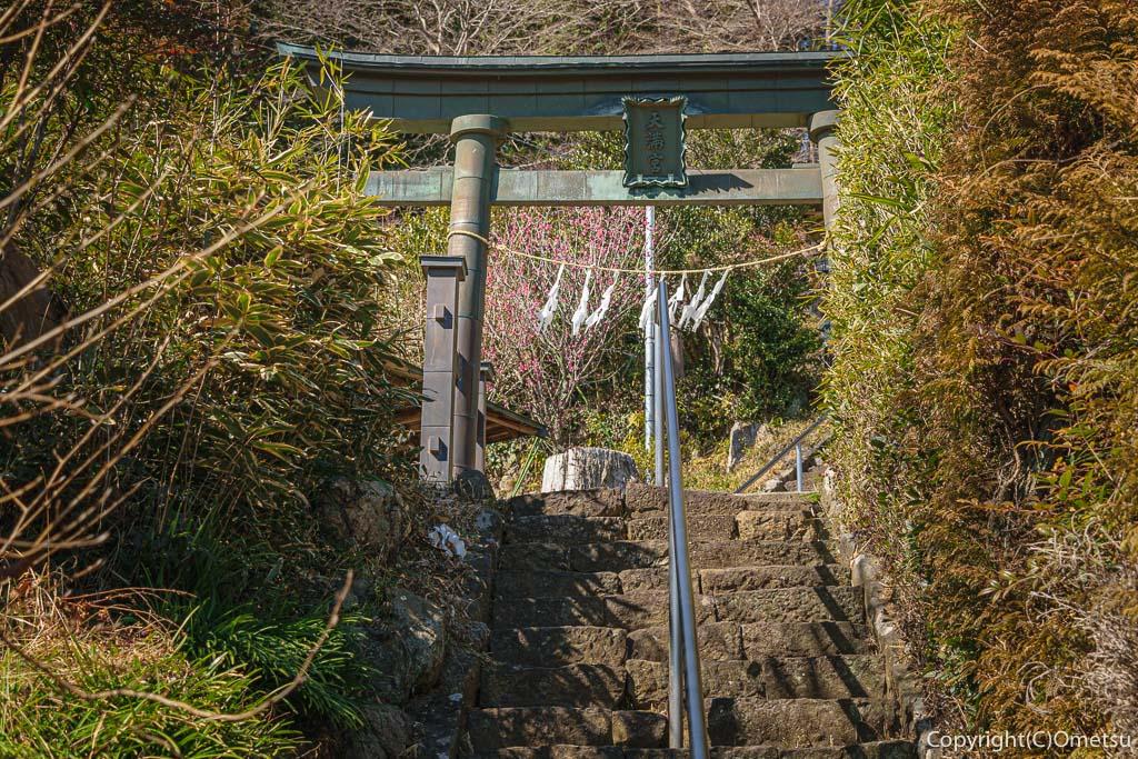 青梅市・梅郷の天澤院裏の神社