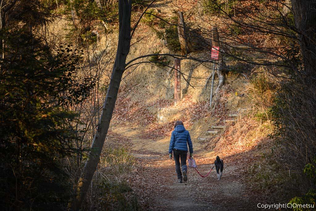 青梅市・永山丘陵の遊歩道で、犬の散歩