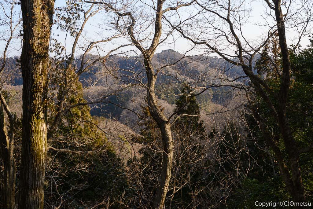 青梅・永山丘陵の里山風景