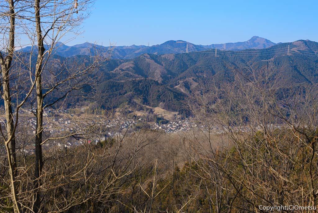 青梅市・永山丘陵・矢倉台から、大岳山