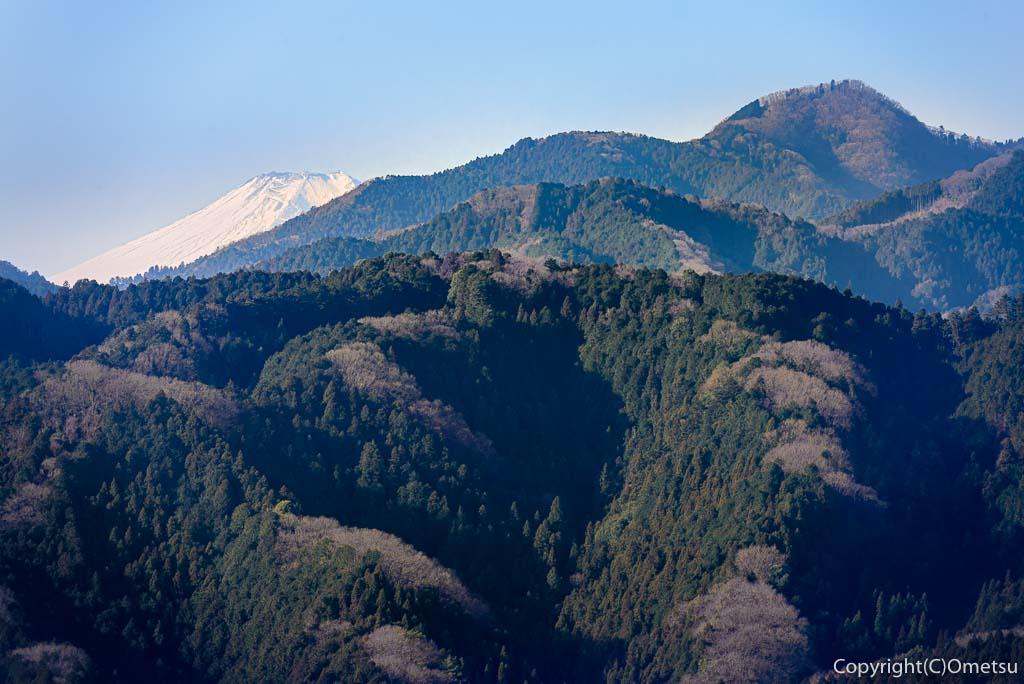 青梅市・永山丘陵・矢倉台から、富士山